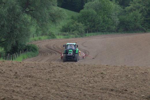 Traktor auf Feld bei Maisaussaat