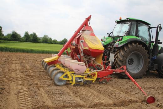 Traktor bei Aussaat